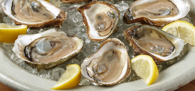 hudson house oysters